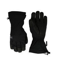Arc'teryx Fission Gloves Black Ski Gloves