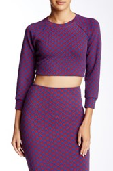 American Apparel Raglan Crop Sweater Purple