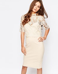 Paper Dolls High Neck Lace Dress With Pencil Skirt Cream