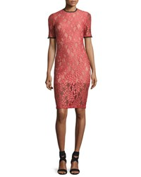 Alexis Remi Short Sleeve Lace Sheath Dress Pink