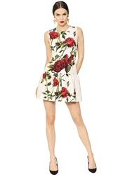 Dolce And Gabbana Rose Printed Cotton Blend Brocade Dress White Red