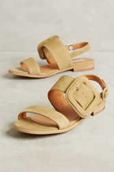 Anthropologie Elysess Suede Khaki Sandals Moss