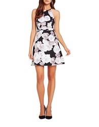 Bcbgeneration Floral Printed Flare Dress Black White