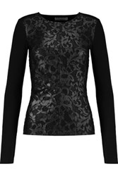 Bailey 44 Kathy Metallic Corded Lace And Jersey Top Black