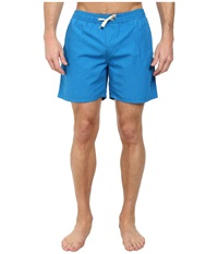 Lightning Bolt Tropical Turtle Bay Boardshorts Directoire Blue Men's Swimwear