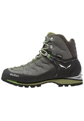 Salewa Rapace Gtx Climbing Shoes Pewter Emerald Dark Gray