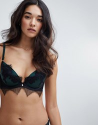 Ann Summers Forest Lace Plunge Bra Green