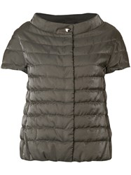 Herno Shortsleeved Padded Jacket Brown