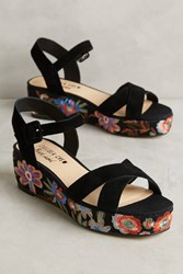 Anthropologie Chelsea Crew Embroidered Floral Sandals Black Motif