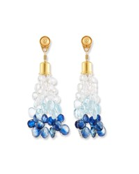Dina Mackney Ombre Stone Briolette Dangle Earrings Blue