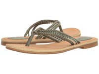 Sperry Anchor Coy Box Olive Women's Shoes
