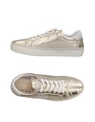 D'acquasparta Sneakers Platinum
