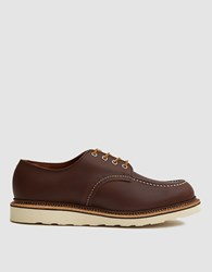 Red Wing Shoes 8109 Classic Oxford In Mahogany Oro Iginal Mahogany Oro Iginal