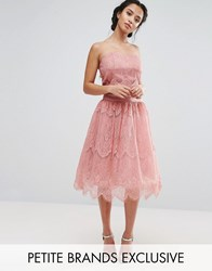 Chi Chi Petite London Allover Lace Tulle Full Prom Midi Skirt Pink
