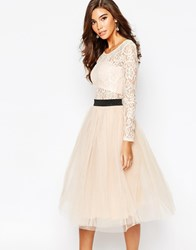 Rare London Sheer Lace Tutu Dress With Contrast Waistband And Tulle Skirt Blushblack