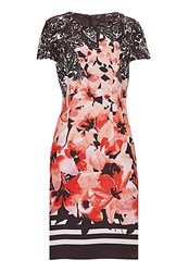 Betty Barclay Floral Printed Dress Brown