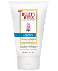 Burt's Bees Intense Hydration Treatment Mask 4 Oz