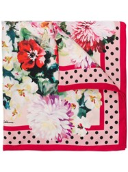 Dolce And Gabbana Flower Print Scarf Pink