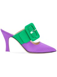Attico Buckled Mules Pink And Purple