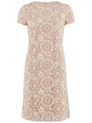 Gina Bacconi Embroidered Daisy Chain Cap Sleeve Dress Pearl