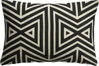 Cb2 Apani 18 X12 Pillow With Feather Down Insert