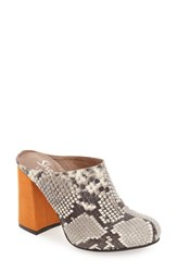 Shellys Women's London 'Kylie' Mule Grey Leather