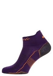 Craft Sports Socks Dynasty Purple