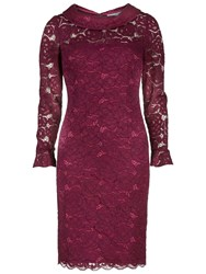 Gina Bacconi Dainty Corded Rose Lace Dress Scrumptious Plum