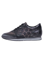 Mjus Telly Trainers Sasso Black