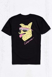 Valley Cruise Cali Dog Tee Black