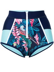 Duskii Tropical Print Bikini Bottoms Neoprene Nylon Polyester Blue