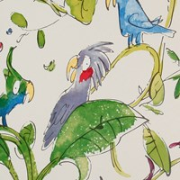 Osborne And Little Zagazoo Collection Cockatoos Wallpaper W606001