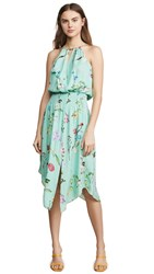 Parker Herley Dress Grass Gigi