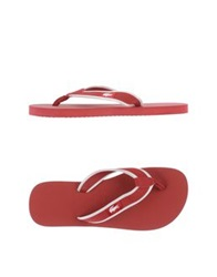 Lacoste Thong Sandals Brick Red
