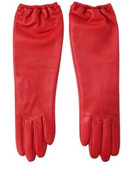 Aristide Long Nappa Leather Gloves
