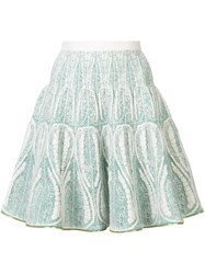 Sophie Theallet Embroidered Flared Skirt Women Silk Polyamide Polyester M Green