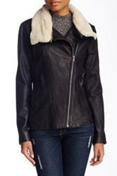 Soia And Kyo Removable Faux Shearling Collar Leather Moto Jacket Black