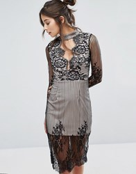 Love Triangle Mesh Long Sleeve Lace Overlay Dress With Choker Neck Black