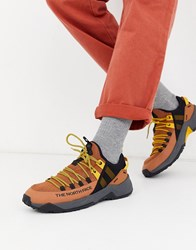 The North Face Trail Escape Edge Trainers In Camel Black Brown