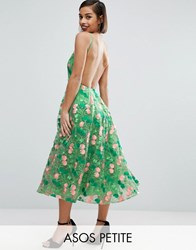 Asos Petite Salon Floral Embroidered Backless Pinny Midi Prom Dress Green