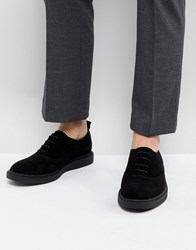 Zign Suede Lace Up Shoes In Black