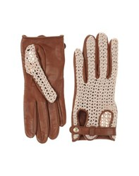 Dsquared2 Accessories Gloves Women Tan