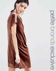 One Day Petite Allover Velvet Mini Shift Dress Chocolate Brown