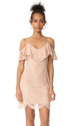 Wayf Luxia Off Shoulder Ruffle Lace Dress Nude Lace