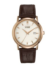 Citizen Eco Drive Stainless Steel Leather Watch Brown