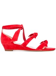 Alexandre Birman 'Gianna' Low Wedge Sandals Women Leather Suede 8.5 Red