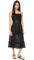 Endless Rose Lace Midi Dress Black