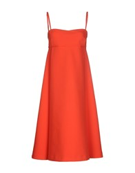 Laviniaturra Knee Length Dresses Coral