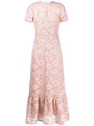 Red Valentino Redvalentino Lace Long Dress 60