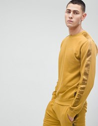 D Struct Crew Neck Sweat With Satin Arm Stripe Gold